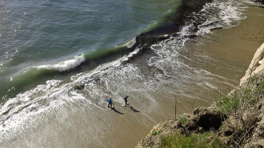 11 -beachcombing