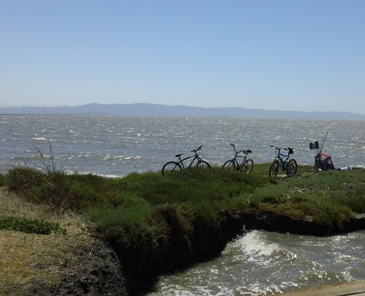 Bicycling by the Bay