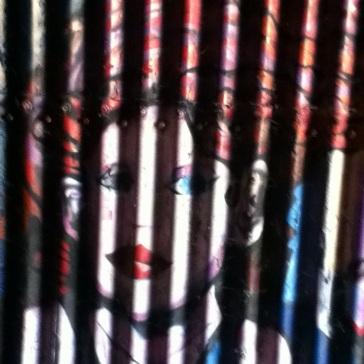 lady looks like she is behind bars