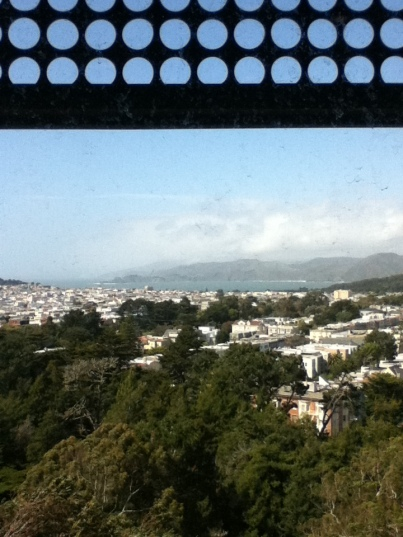 9 -view from de Young