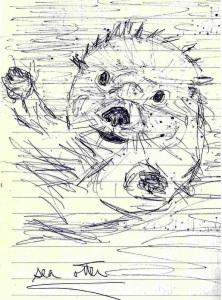 3-sea-otter1