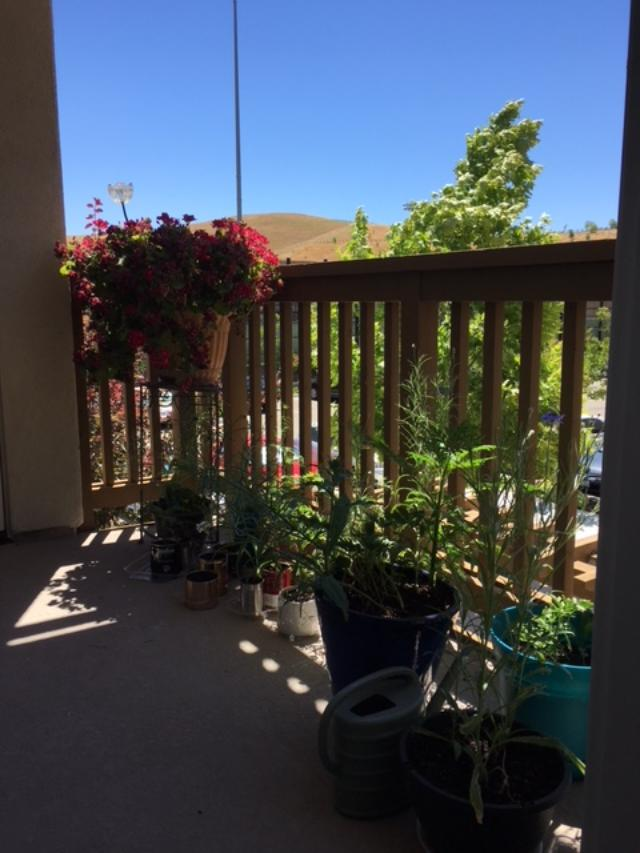 6 long view of small porch